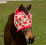 Heartbreaker Fly Mask