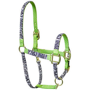 Zebra on Green Polka Horse Halter red haute horse halters