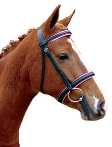 Pink Equine Branded Bridles