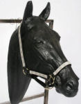 Square Horse Head Design Halters